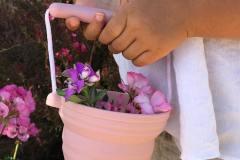 Seedling-Pot-Lifestyle-1-min